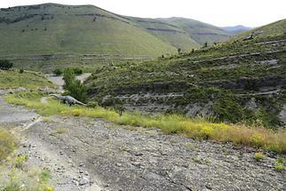 Saurian Tracks Valdecevillo (3)
