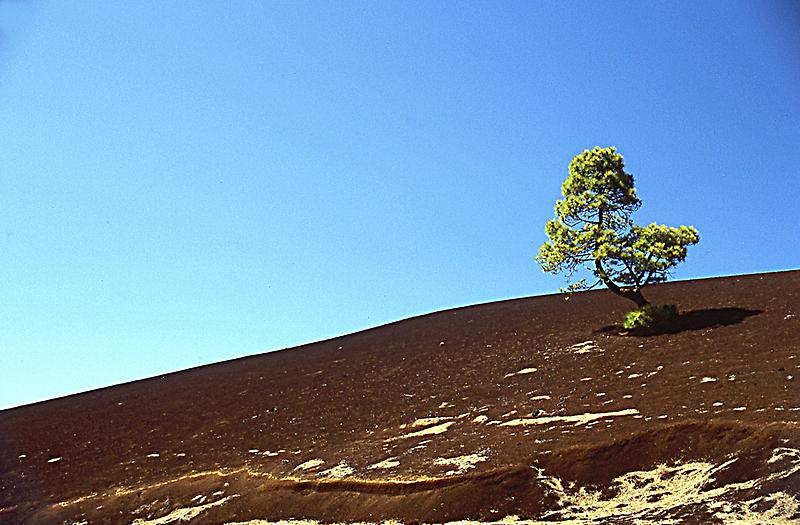 Pico de Teide National Park