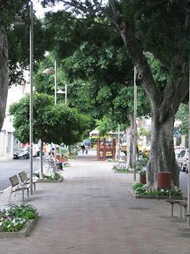 Santa Cruz deTenerife - Avenida de 25 de Julio