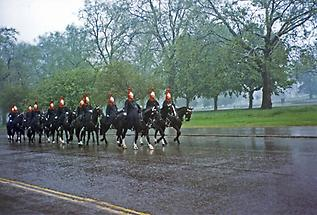 The Royal Horse Guards