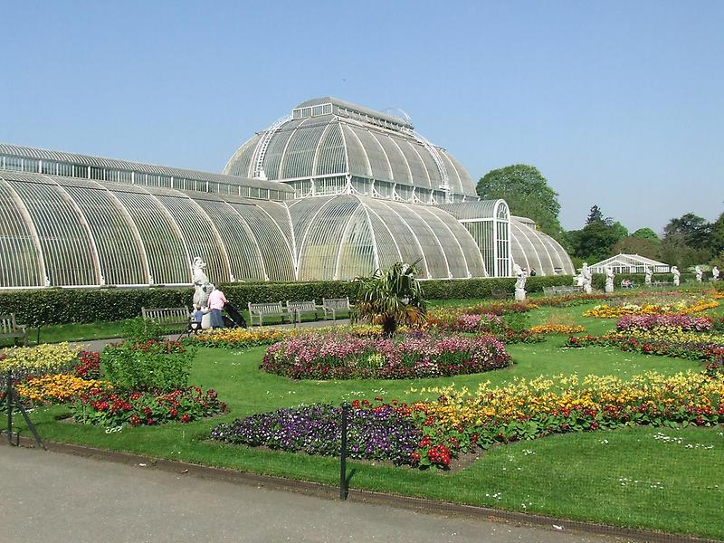 The Palm House, Royal Botanic Gardens (1)