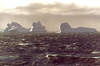 Looming icebergs y