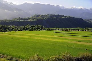 East Rift Valley (1)
