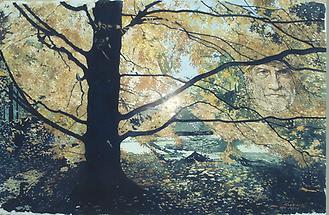 Erscheinung im Baum