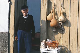 Sessel-Markt