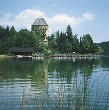 Fuschl am See - Schloss Fuschl 2