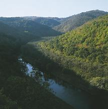 Thayatal bei Hardegg (Nationalpark Thayatal)