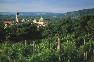 Blick auf Klosterneuburg, Weingärten