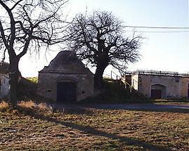 Weinkeller in Pulkau