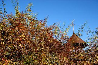 Reichersdorf Herbst