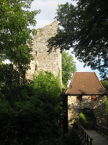 Burgruine Haichenbach (3)