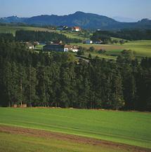 Königwiesen - Mühlviertler Landschaft