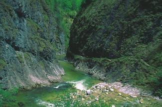 Reichraming - Grosse Schlucht - Reichraminger Hintergebirge - Nationalpark Kalkalpen 1