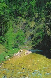 Reichraming - Reichraminger Hintergebirge - Nationalpark Kalkalpen