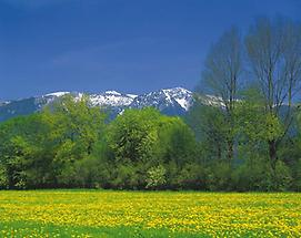 Windischgarsten - Sengsengebirge