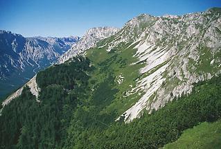 Aflenzer Staritzen