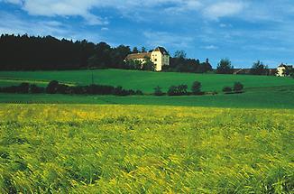 Schloss Obermayerhofen