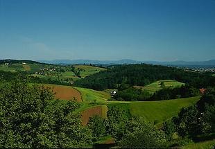 Landschaft Pöllau Oststeiermark