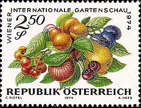 Gartenschau - Obst