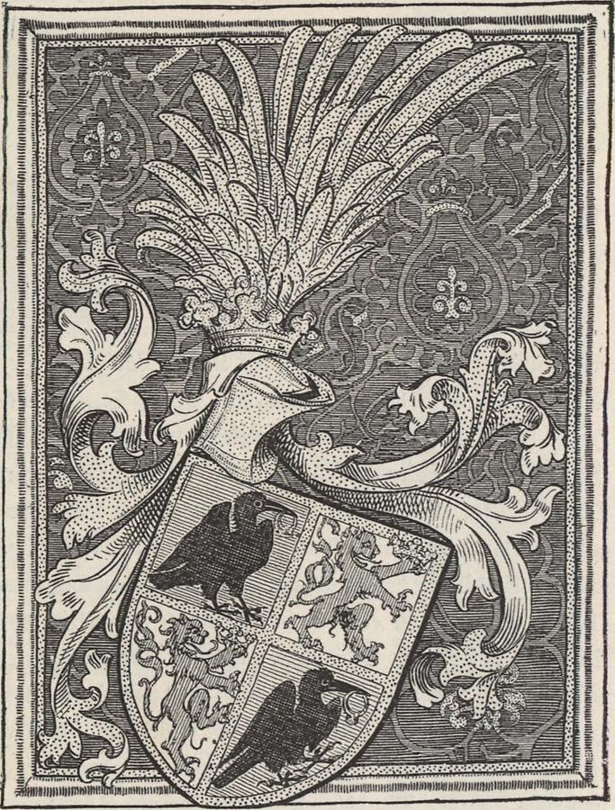 Illustration Wappen Johann Hunyadis