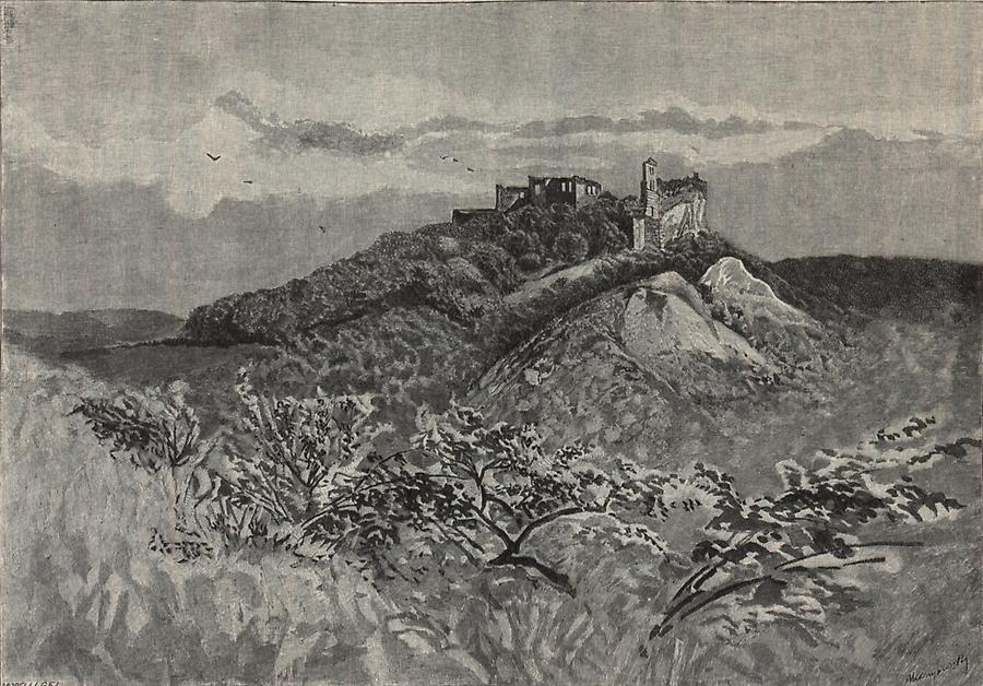 Illustration Ruine Pallenstein