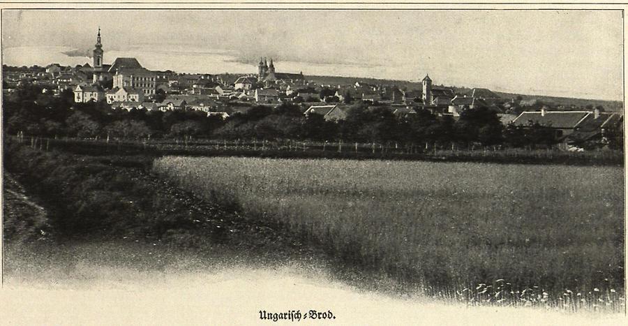 Illustration Ungarisch-Brod