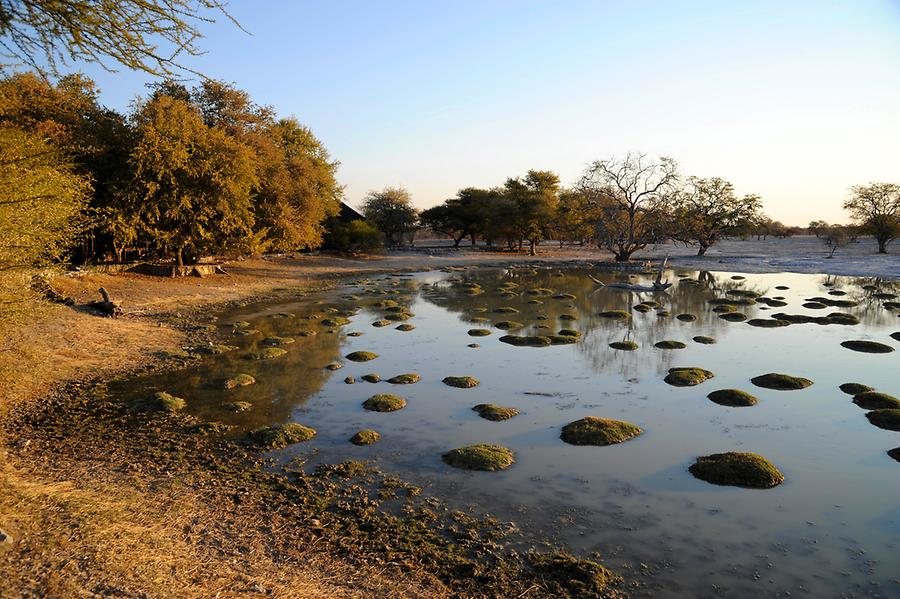 Edos Camp Waterhole
