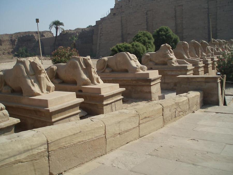 Sphinxes, Temple of Karnak