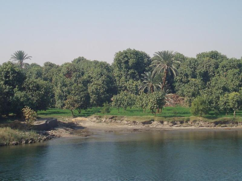 Nile River, Edfu (2)
