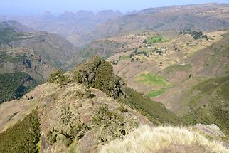 Simien Mountains National Park (3)