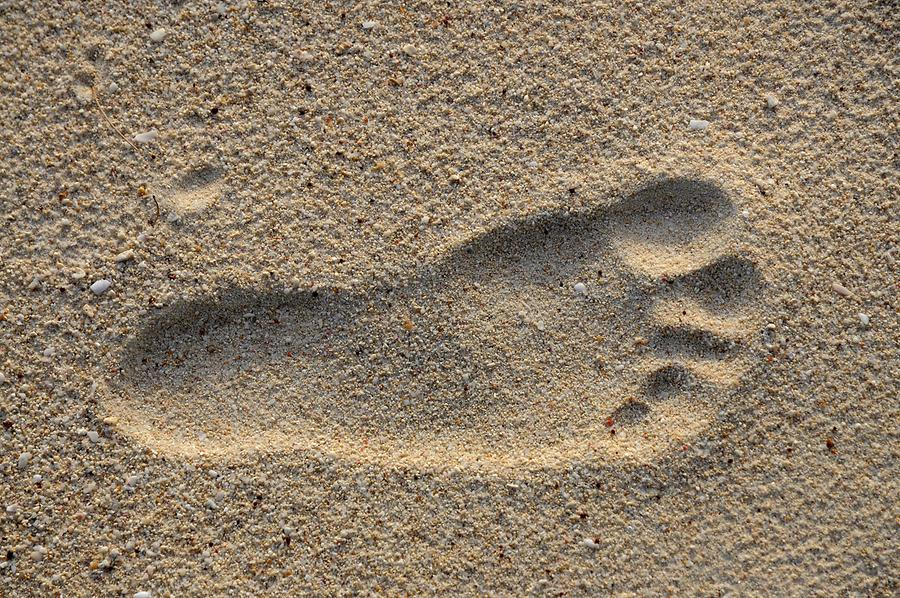 Anse Kerlan - Footprint
