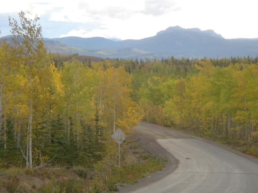 Mackenzie Highway northward, Photo: H. Maurer, Fall 2005