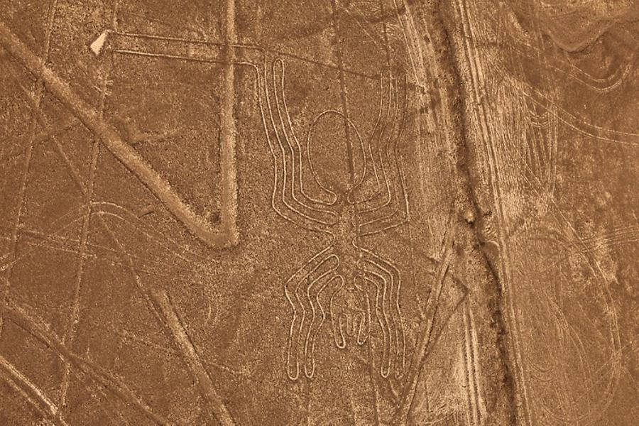 Nazca lines, the Spider