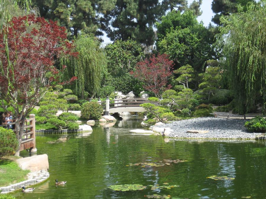 LA MA Long Beach Earl Burns Miller Japanese Garden CSULB