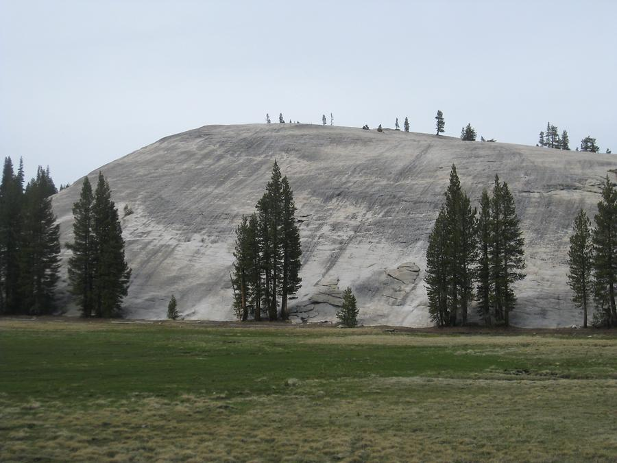 Yosemite National Park Tuolumne Meadows