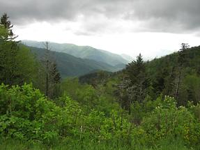 Great Smoky Mountains (2)
