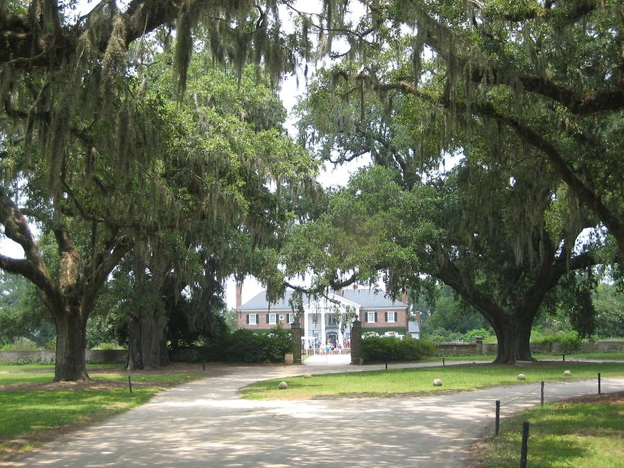 Mt. Pleasant Boone Hall Plantation