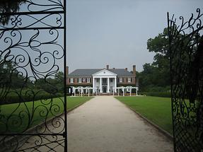 Mt. Pleasant Boone Hall Plantation (5)