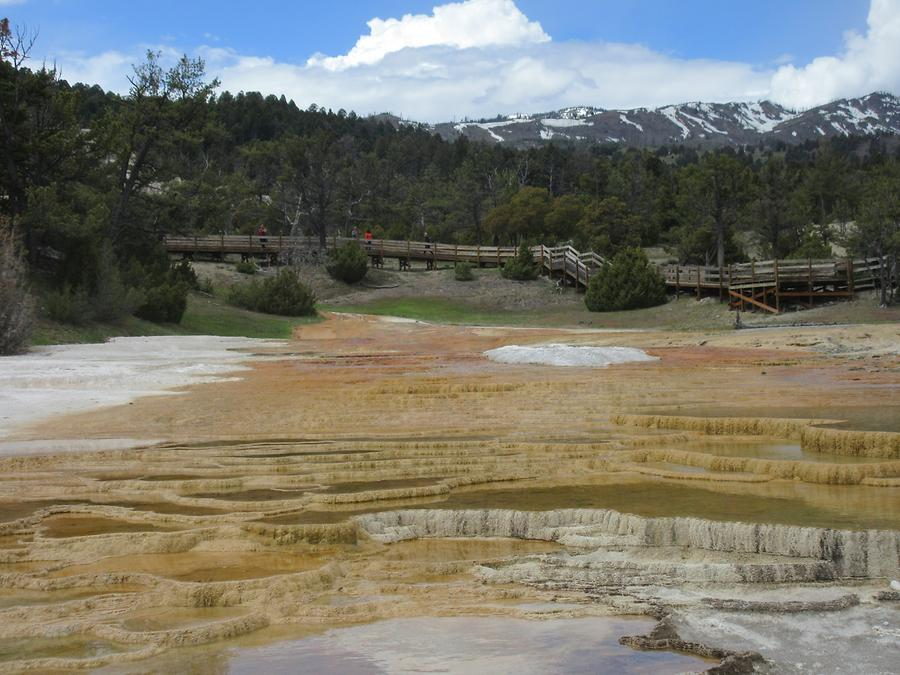 Yellowstone National Park - Mammoth Hot Springs Terraces