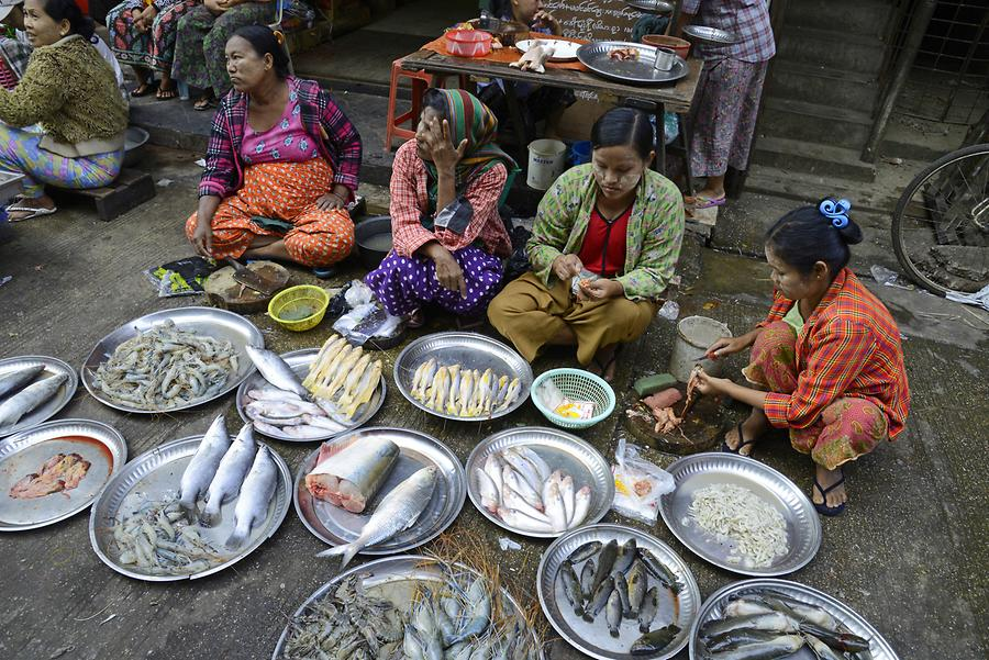 Indian Fish Market