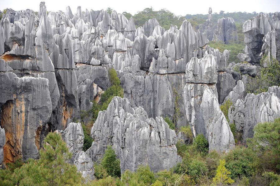 Shilin - Stone Forest
