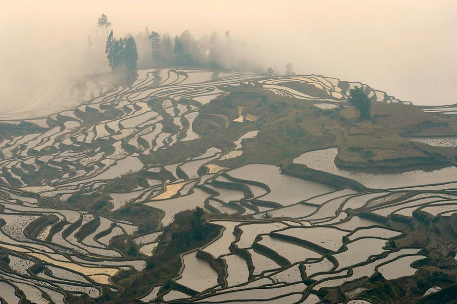 The Rice Terraces of Duoyishu