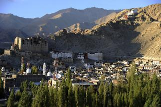 Royal Palace and Namgyal Tsemo Monastery