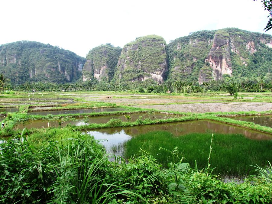 Harau Valley, Sandstone Massif