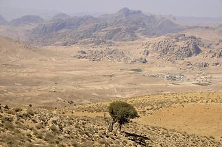 View of Little Petra