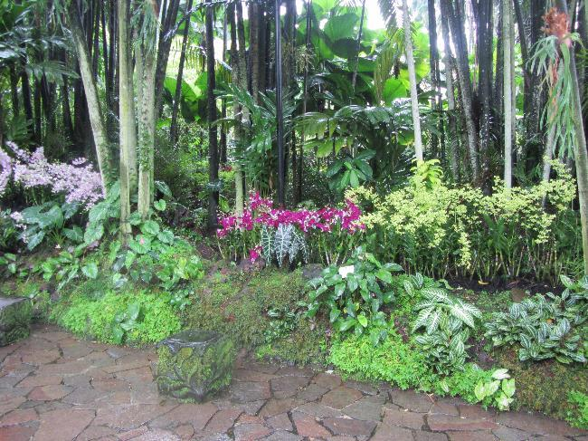 National Orchid Garden (2)