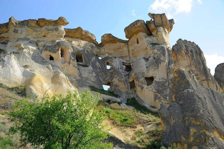 Castle Rock Cavusin