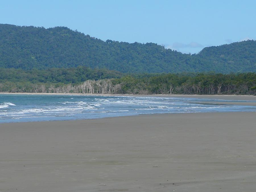 Beach, Daintree park
