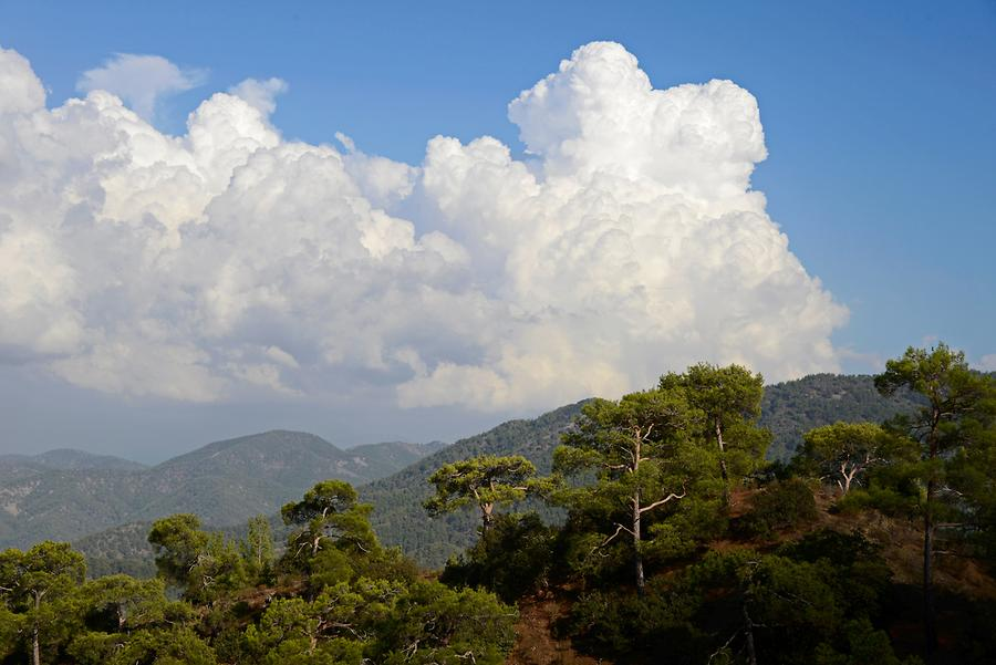 Troodos Mountains - After the Thunderstorm