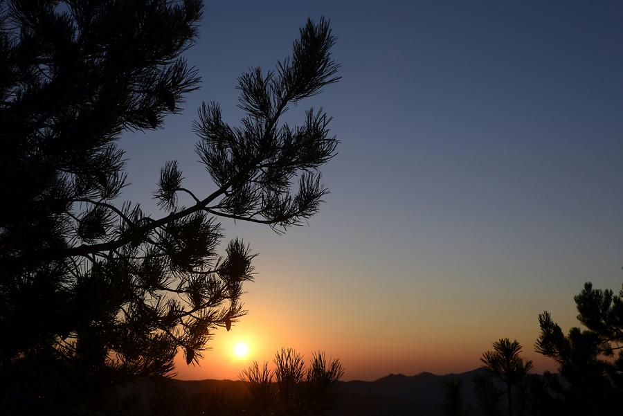 Troodos Mountains - Sunrise